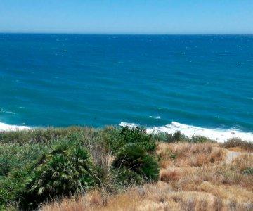 Imagen: Mi gran miércoles | Surf AHIERRO!