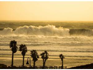 Imagen de Samuel Cárdenas - Surf AHIERRO!