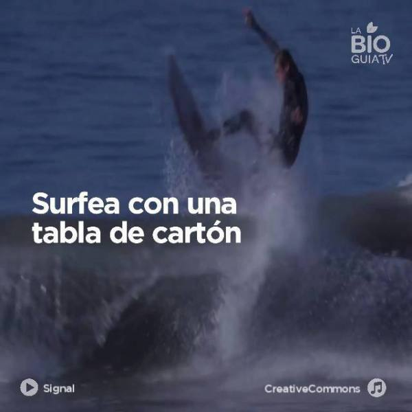 Imagen de Surfea con una tabla de cartón | Surf AHIERRO!