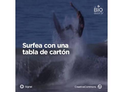 Surfea con una tabla de cartón - Surf AHIERRO!
