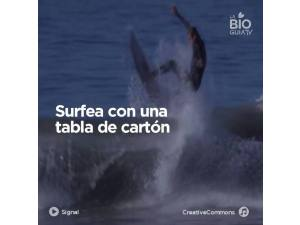 Surfea con una tabla de cartón - Surf AHIERRO!