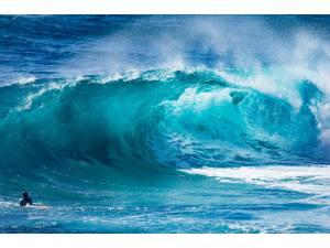 Imagen de Manila Cordaro en Surfer Rule - Surf AHIERRO!